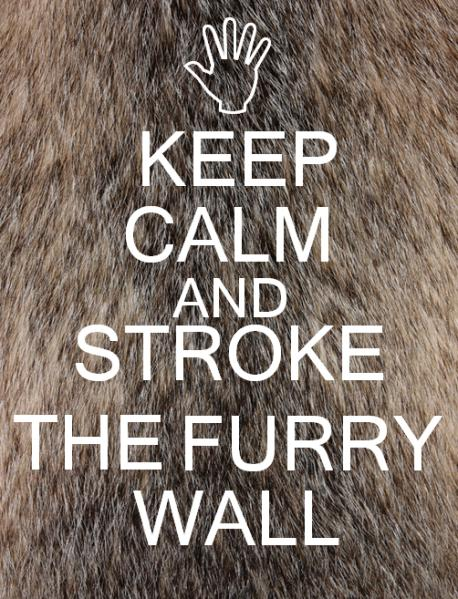 Keep Calm And Stroke The Furry Wall - a variation of the old British World War II propaganda poster 'Keep Calm And Carry On'